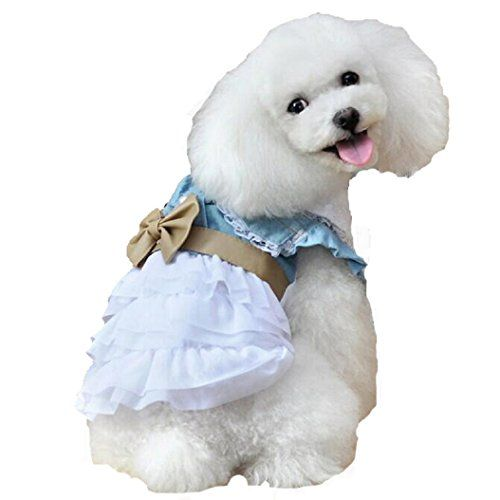 Urparcel Pet Dog Lace Tutu Dress Striped Spider Skirt Princess Clothes Rose S - http://www.petsupplyliquidators.com/urparcel-pet-dog-lace-tutu-dress-striped-spider-skirt-princess-clothes-rose-s/