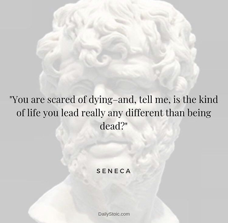 Daily Stoic Dailystoic Twitter Stoicism Quotes Stoic Quotes Seneca Quotes