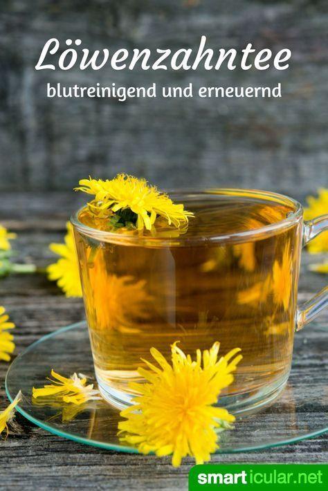 Il tè di tarassaco ti rende vivace, ti aiuta a perdere peso ed è un compagno di digiuno ideale