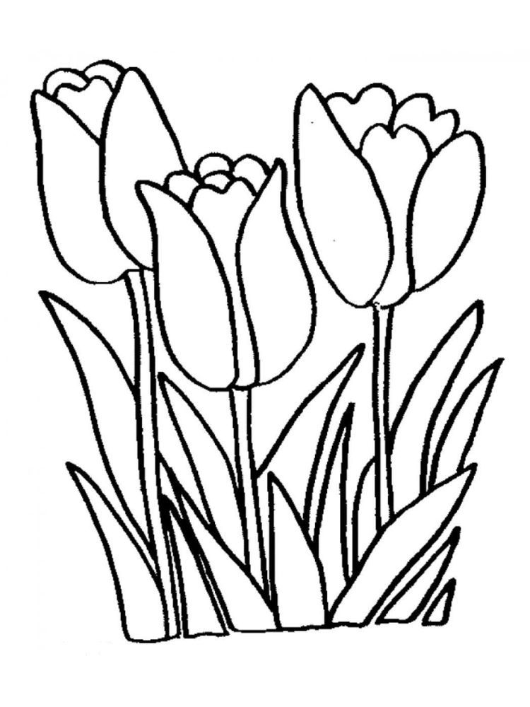 Tulip Coloring Pages For Adults Printable Flower Coloring Pages Flower Coloring Pages Flower Printable