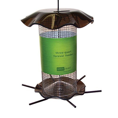 Outdoor Décor-Birds Choice 3 qt Forever Black Oil Sunflower Smokey Color -- Want to know more, click on the image.