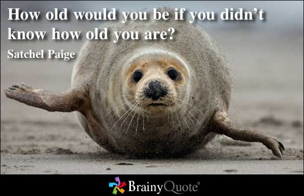 Quote Of The Day Page 2 Brainy Quotes Dont Look Back Quotes Birthday Quotes