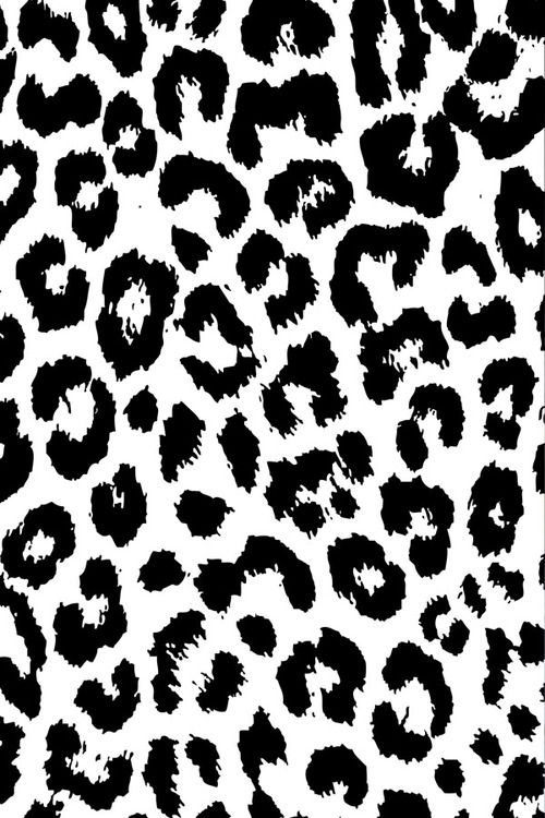 Expressive Collections Animal Print Wallpaper Leopard Print Wallpaper Cheetah Print Wallpaper