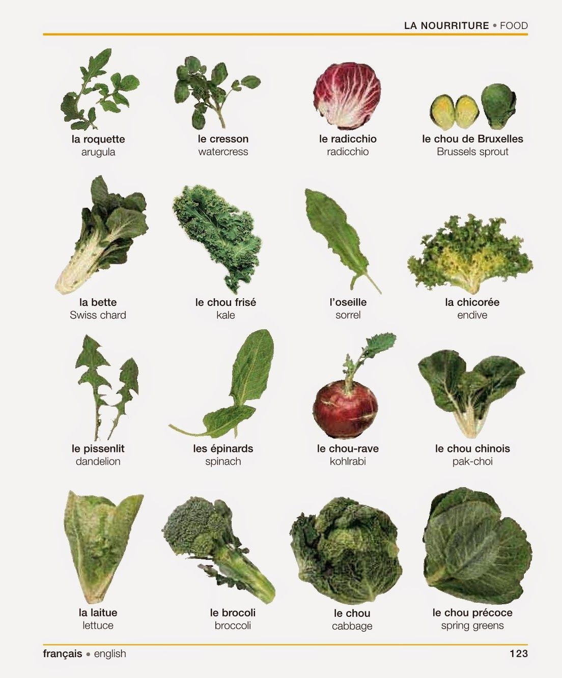 French for newbies la nourriture vocabulaire structures pinterest legume vert les - Vocabulaire cuisine allemand ...