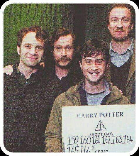 Pin Von Amber Smith Auf Harry Potter Harry Potter Memes Harry Potter Und Harry Potter Cast