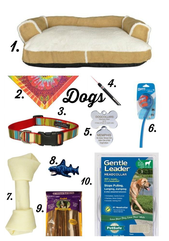 Dogs Must Have