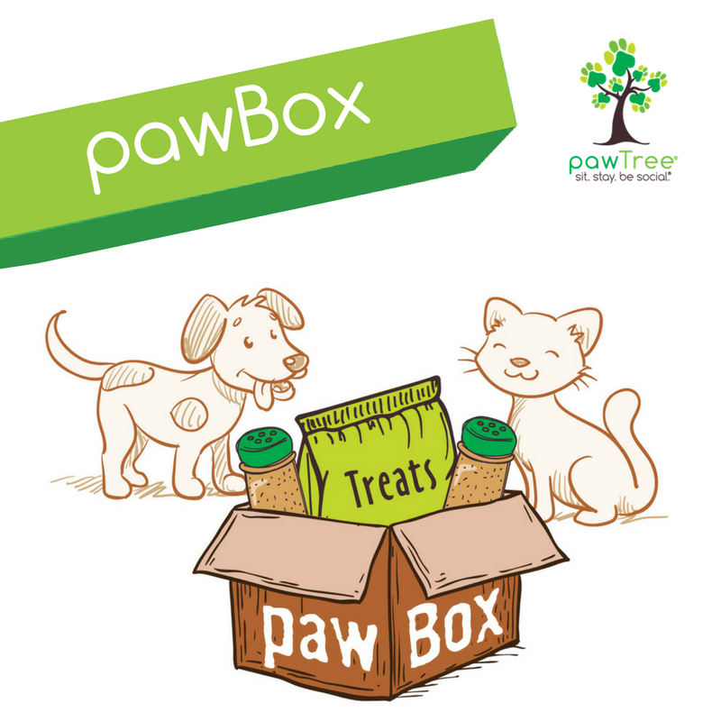 My River Dog Loves His Pawbox He Gets 5 Items Treats Superfood Seasonings Order One Today You Can Have It Delivered Every Pawtree Holistic Pet Your Pet