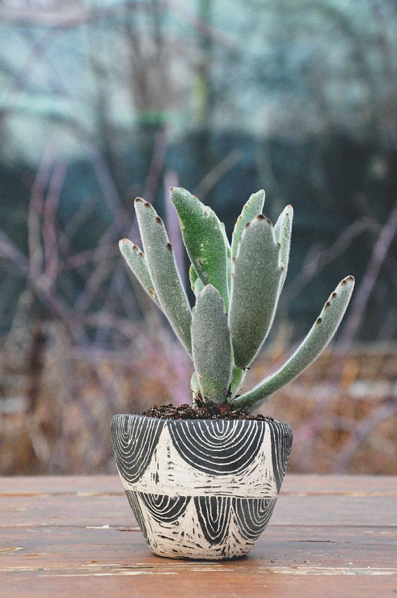 Hand carved ceramic table planter quot arc sgraffito