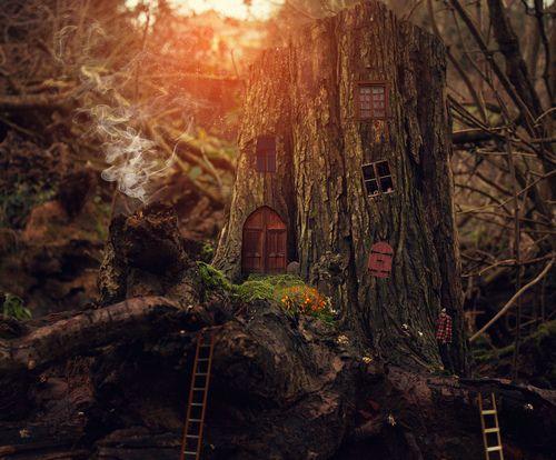 Dollshousedropin: Pixie House (by Vincent Bourilhon)