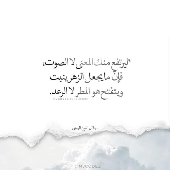 ليرتفع منك المعنى لا الصوت Inspirational Quotes Arabic Quotes Words