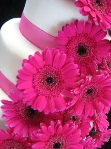 Pink Gerberas Cake!!