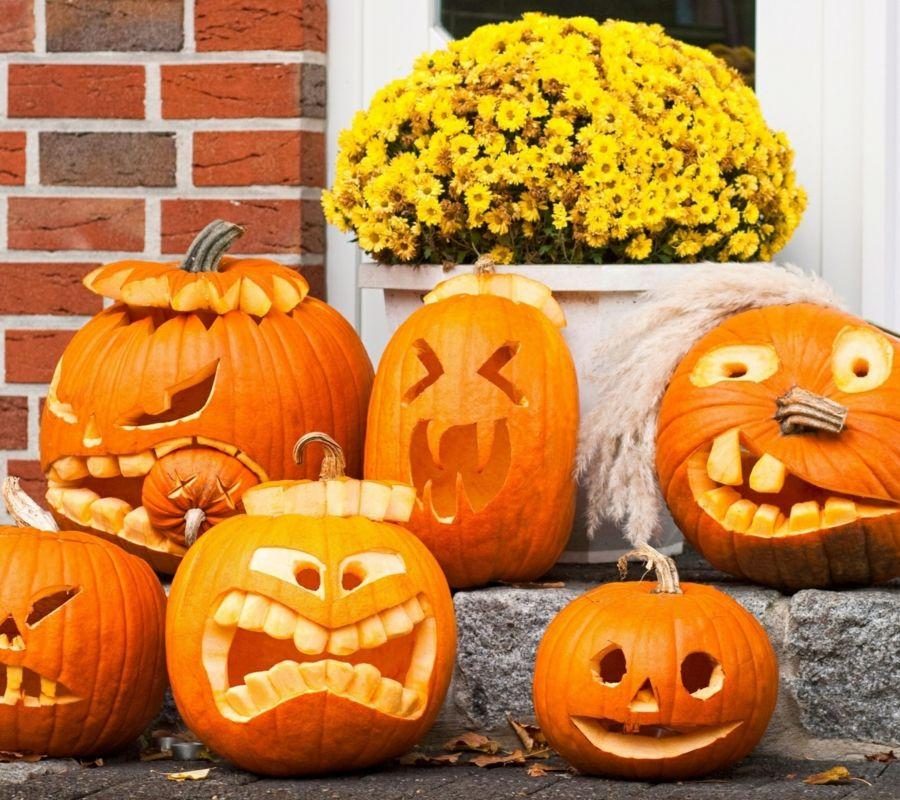 Gallery Halloween Kürbis   40 ausgefallene Ideen, wie Sie Kürbisse zu Halloween in Szene setzen is free HD wallpaper.