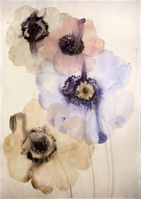 Lourdes Sanchez 4 anemones, 2014 SANCH184 watercolor, 43 x 29.5 inches