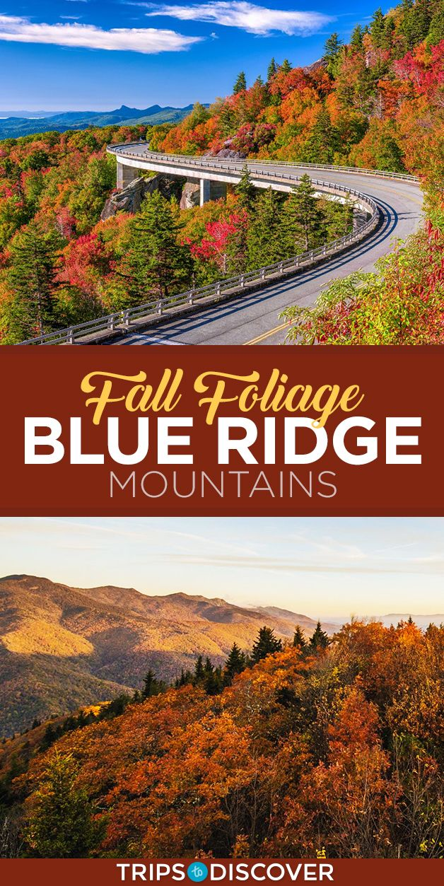 6 Best Places To See Fall Foliage in the Blue Ridge Mountains