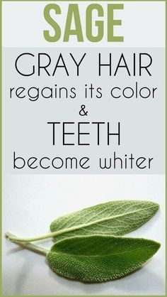 Gray Hair Regains Color And Teeth Whiten With This Herb - Dennis Remedy #bestteethwhitening