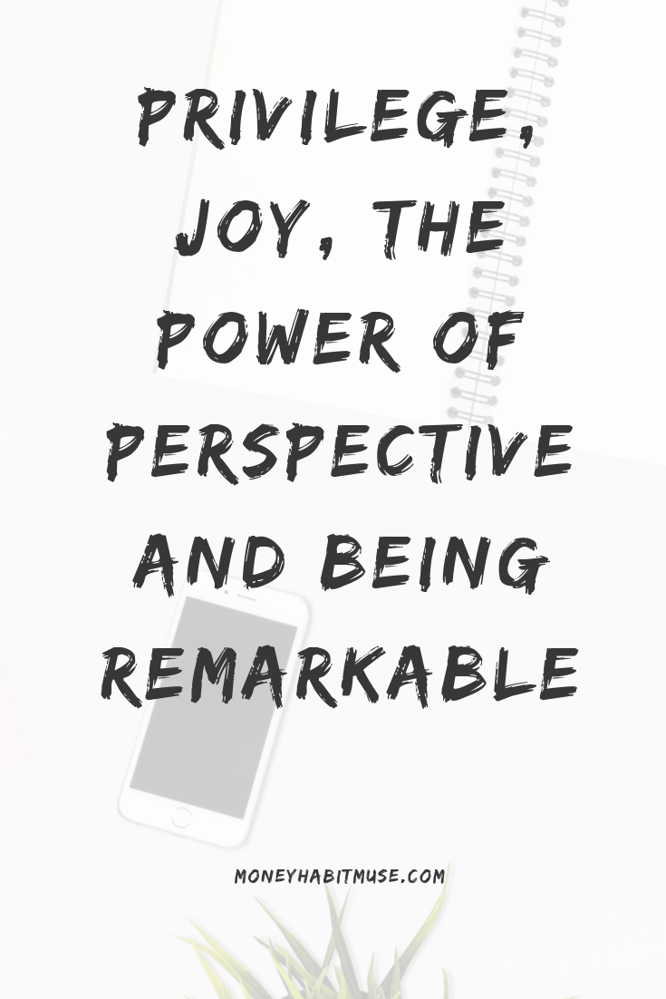 Privilege Joy the Power of Perspective and Being