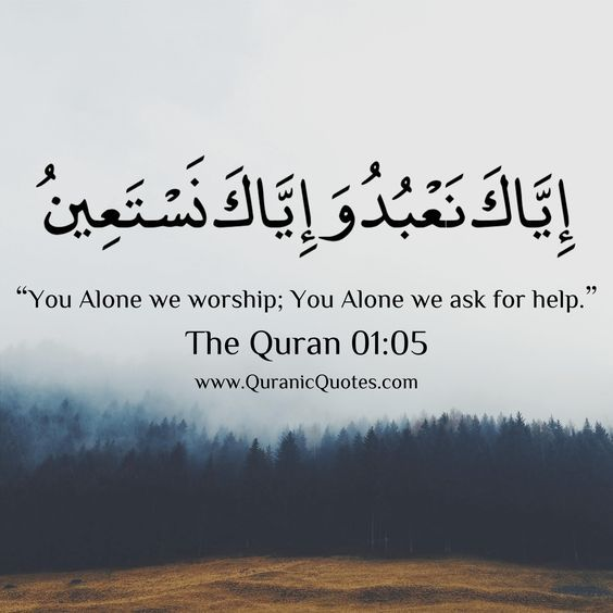 200+ Beautiful Quran Quotes, Verses & Surah [WITH PICTURES ...