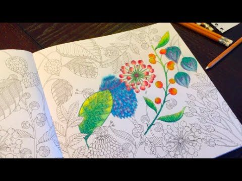 Color Pairing Blending Ideas Tropical World Adult Coloring Book