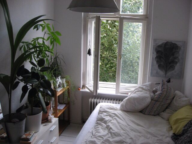 Bedroom Ideas Plants