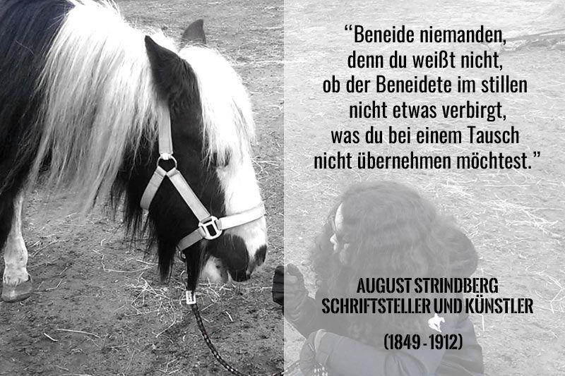 August Strindberg Beneide Niemanden Denn Du Weisst Nicht Pferde Zitate Neid Spruche
