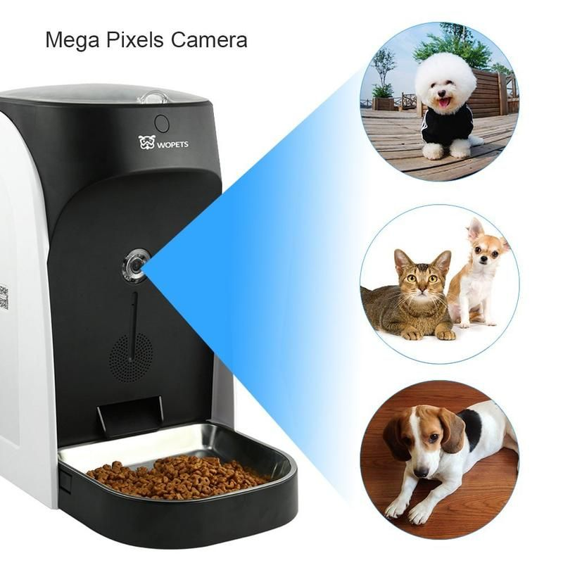 Pin By Sanudev On 01 With Images Pet Feeder Dog Feeder Pets