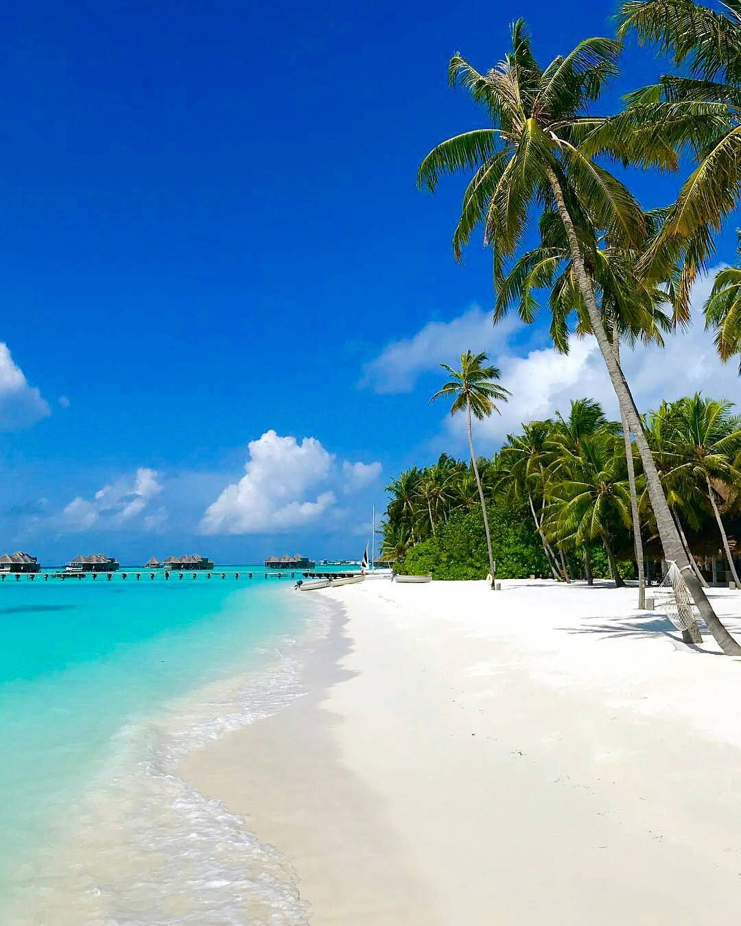 Island Beach Wallpaper: Maldives - Repinned By @youngandmerri