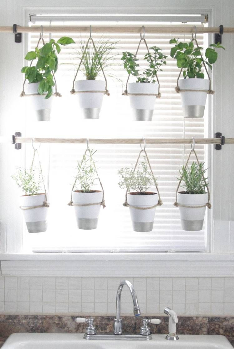 cultiver des plantes aromatiques petits pots suspendus #flowers
