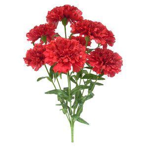Red Carnation Bush Walmart Com Carnations Red Carnation Bush