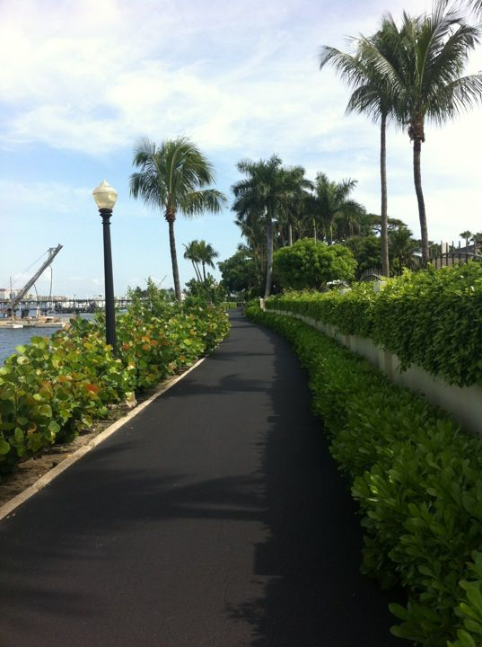 Bike Along The Palm Beach Trail