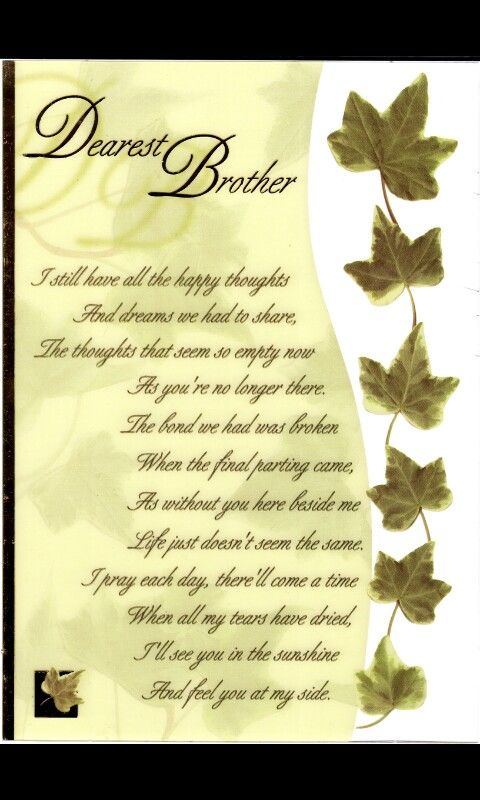 Pin by Lisa Williams on Brother | Big brother quotes ...
