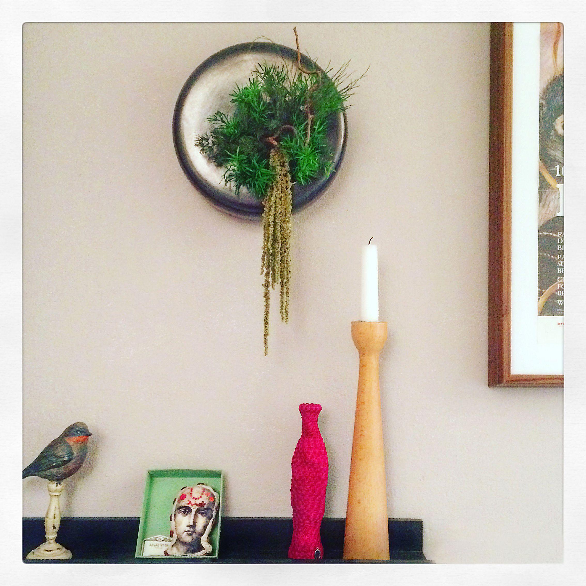 Design végétal, plantes stabilisées.Création et réalisation