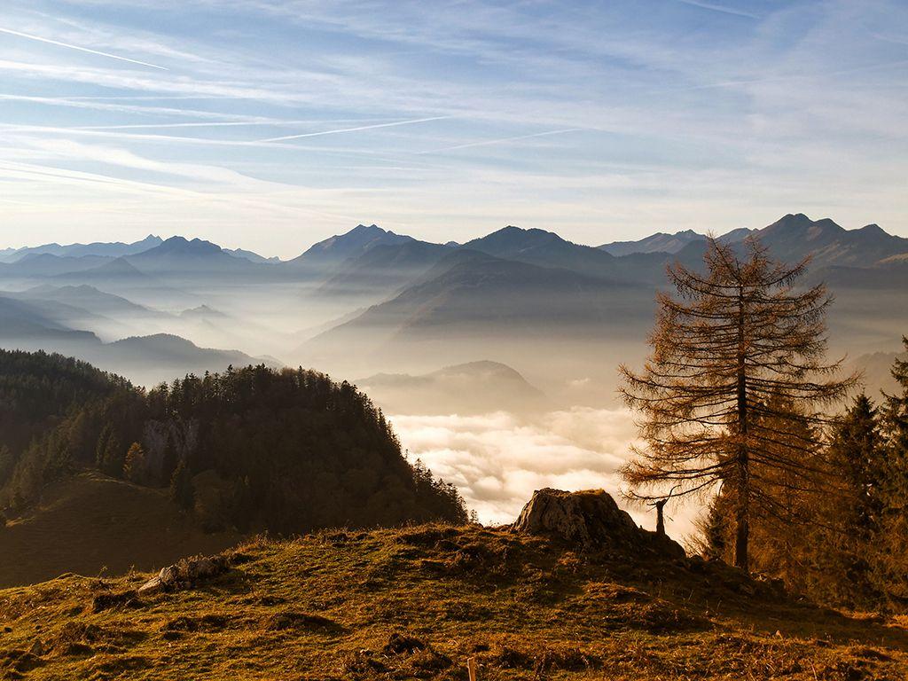 Aueralm Mountainbike Traumtour im Tegernseer Tal