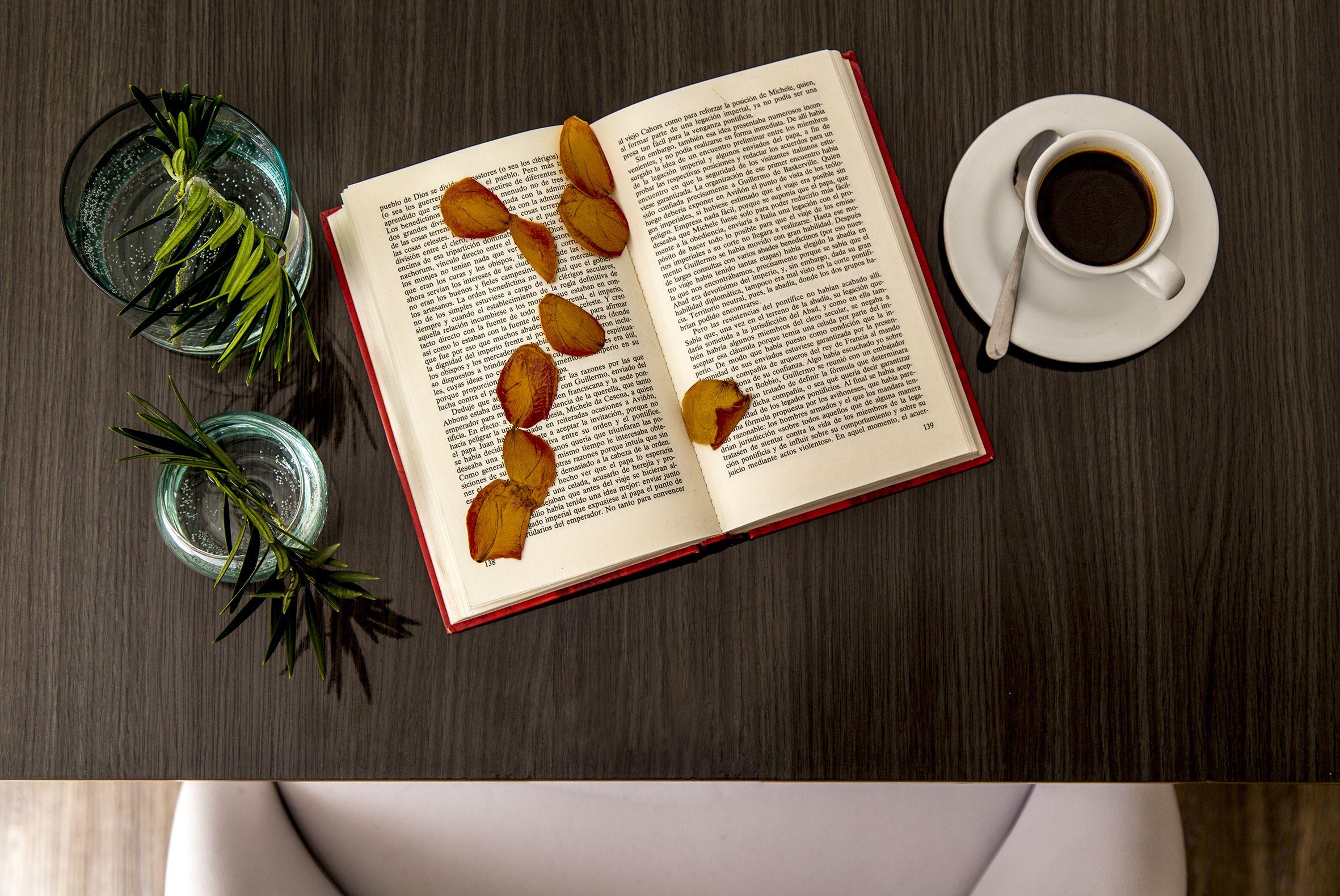 Cafe y lectura en las habitaciones de Eco Boutique Hotel