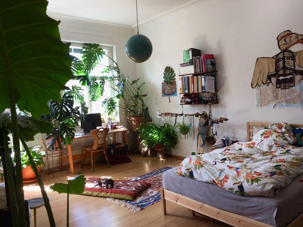 In Diesem Wilden Jungel Zimmer Befindet Sich Ein Multifunktionales  DIY Hängegestell! Eine Einfache