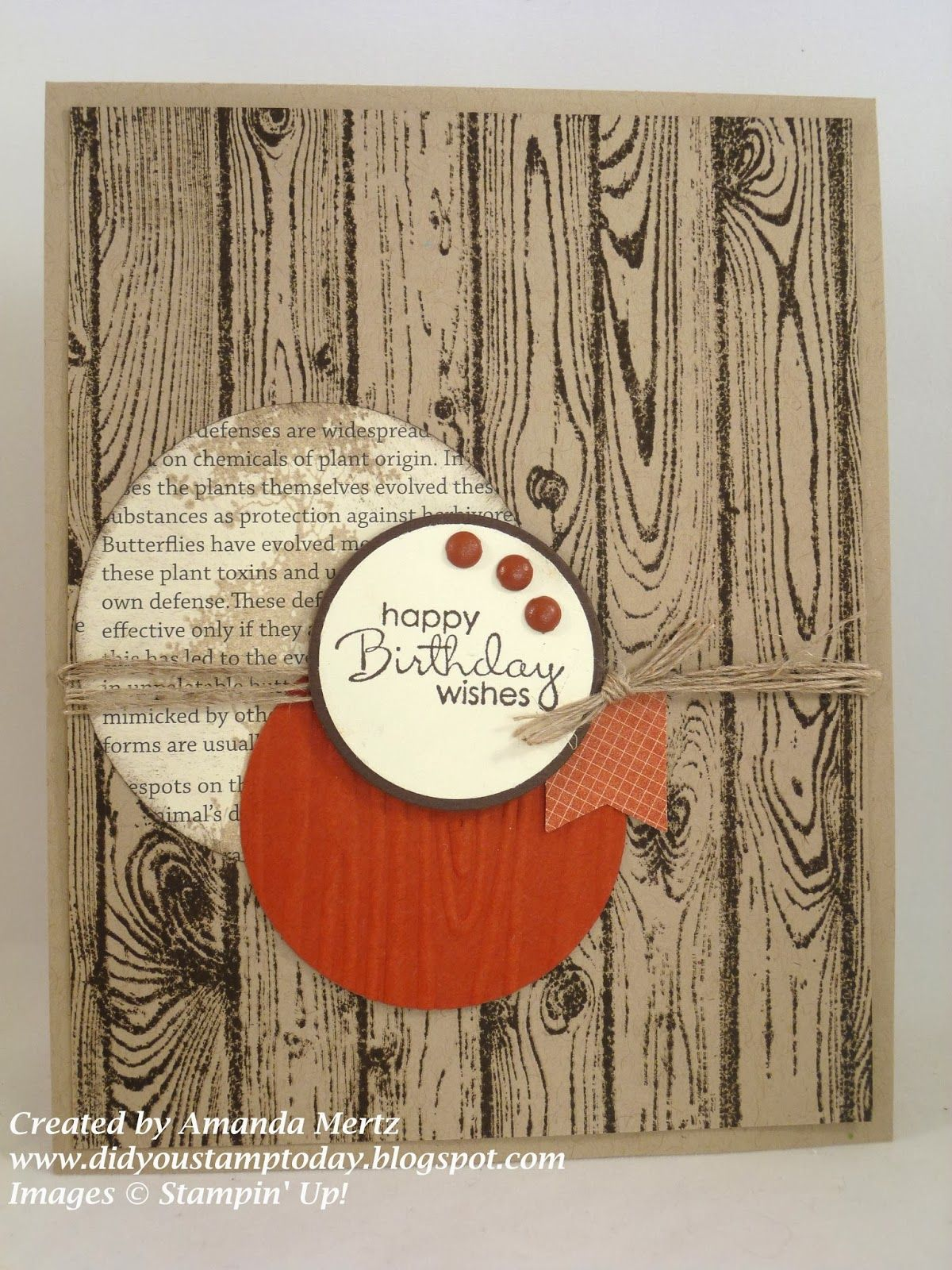 Cajun Hardwood Birthday Did You Stamp Today Embossing Folder