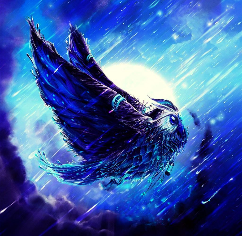 Messenger Magical Fantasy Moon Bird Rain