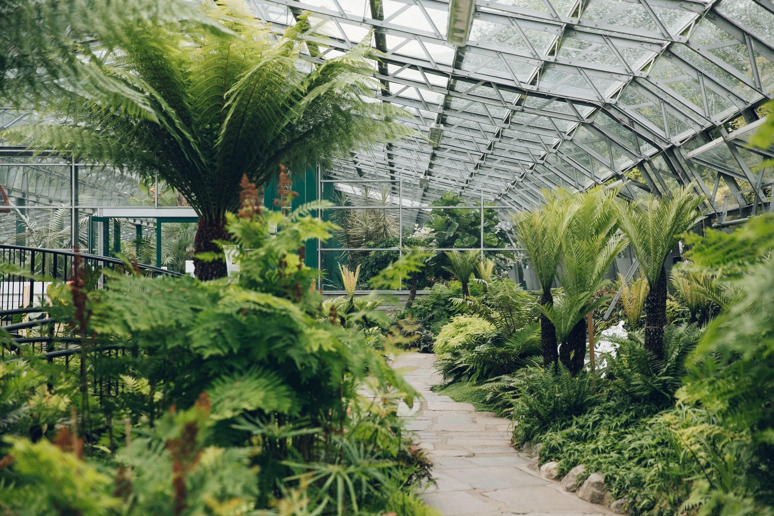 the david welch winter garden duthie park in aberdeen scotland