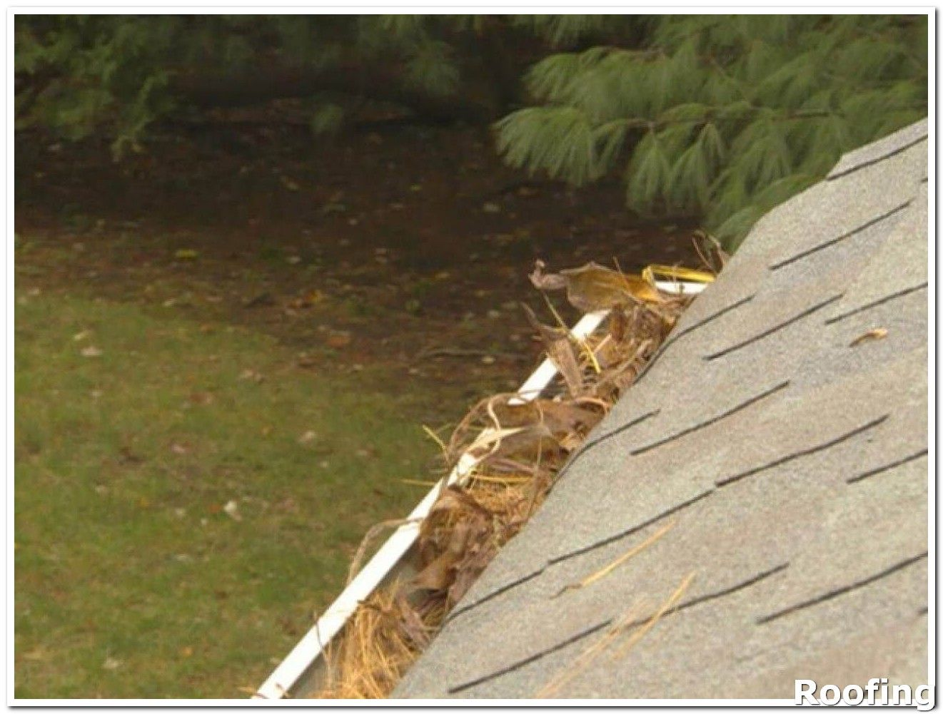 Roofing Tips That Everyone Needs To Know About Be Sure To Check Out This Helpful Article Roofingtips Roof Repair Diy Roofing Gutters