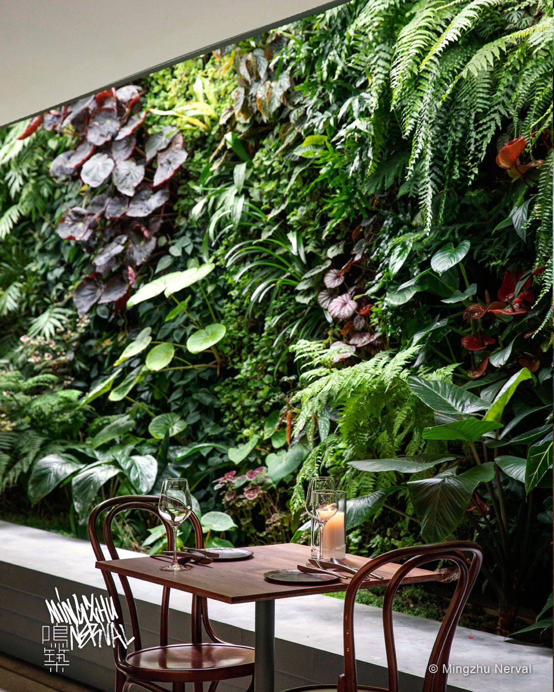 TROPICAL PLANTS DESIGN AT BLOOM RESTAURANT