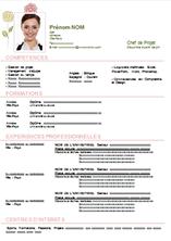 cv original personnalisable pinterest - Curriculum Vitae Francais Modele