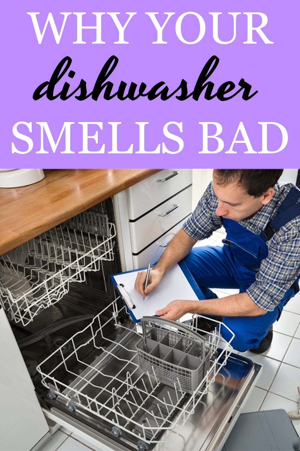 Wondering Why Your Dishwasher Smells So Bad We Ve Got The Answer