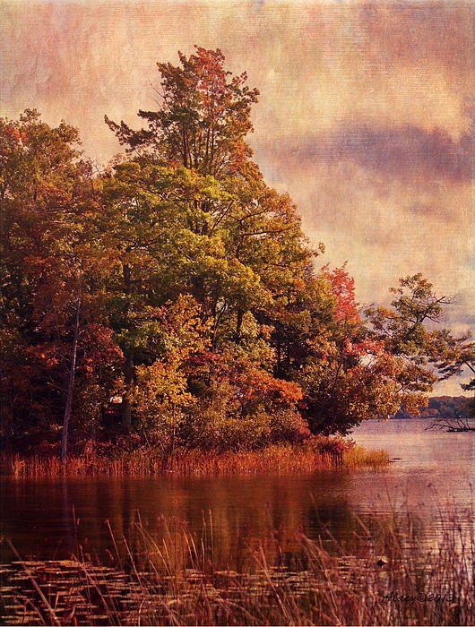 Hamlin Lake, Michigan :) ©2013 Anne Lacy