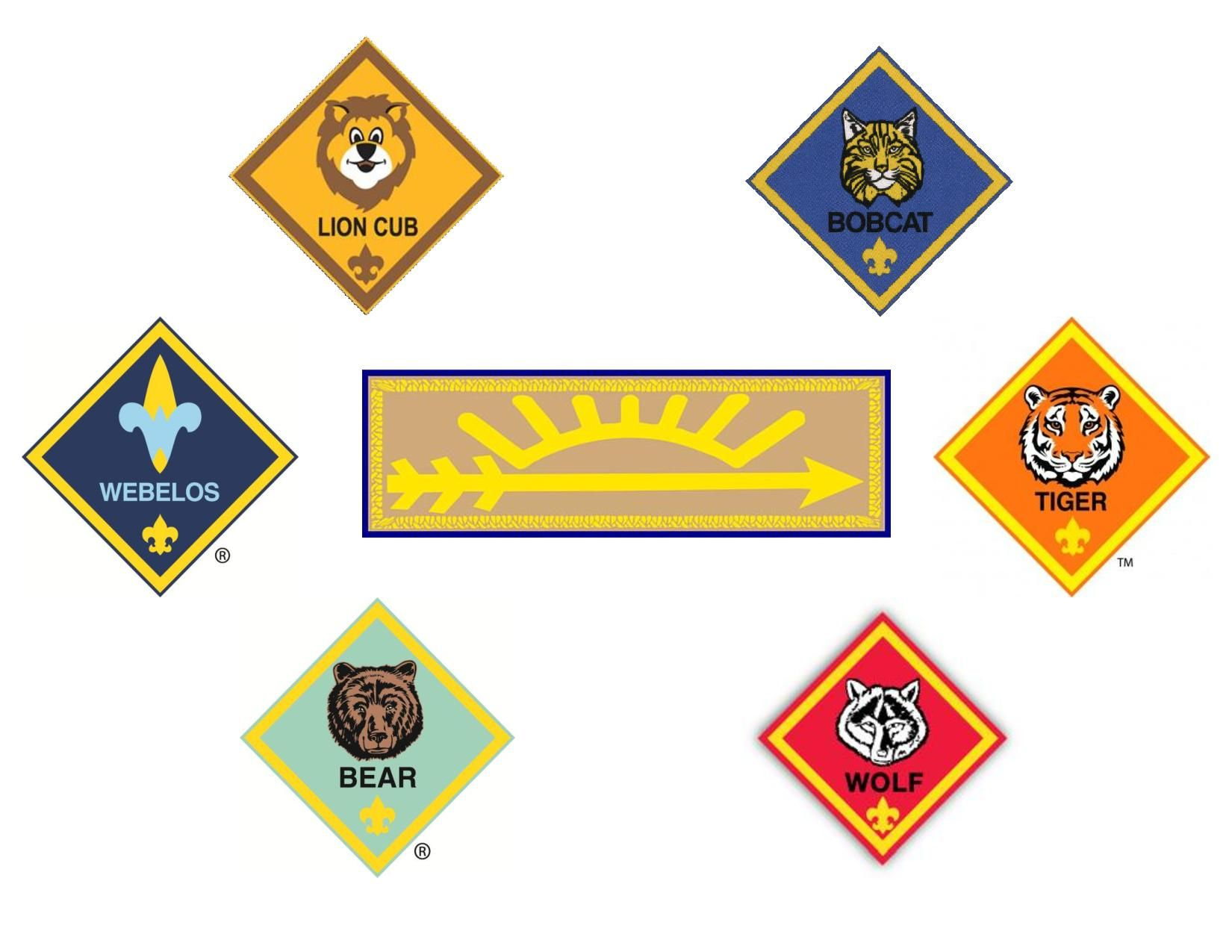 Pin On Bsa Cub And Boy Scout Rank Pictures
