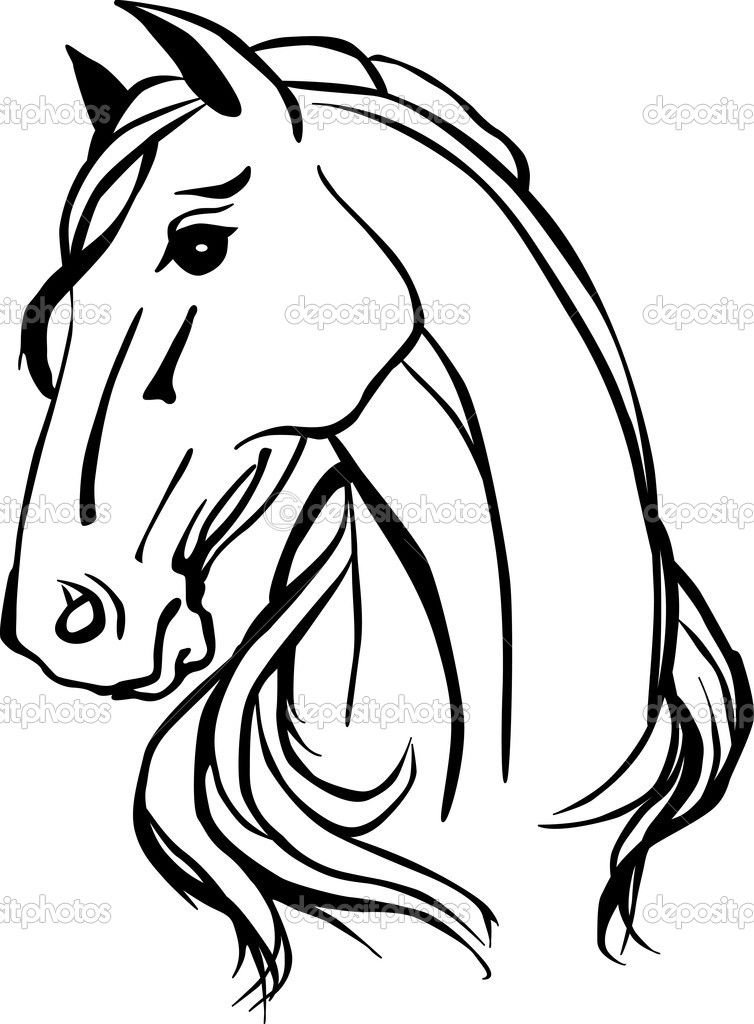 Line Drawing Head : Animals for gt horse head line drawing cookie ideas