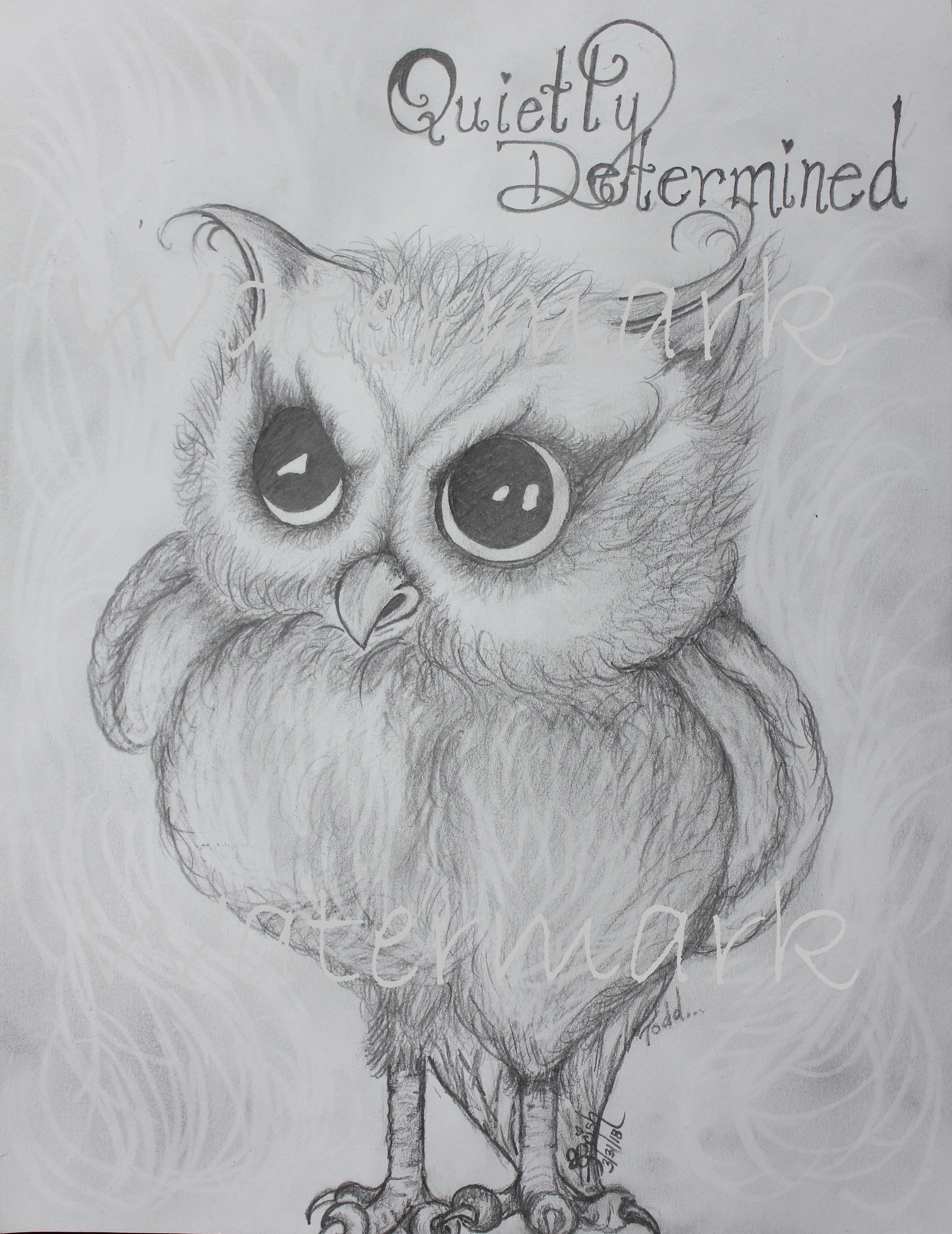 Cute Quietly Determined Owl Cute Owl Print Determined Owl Sketch