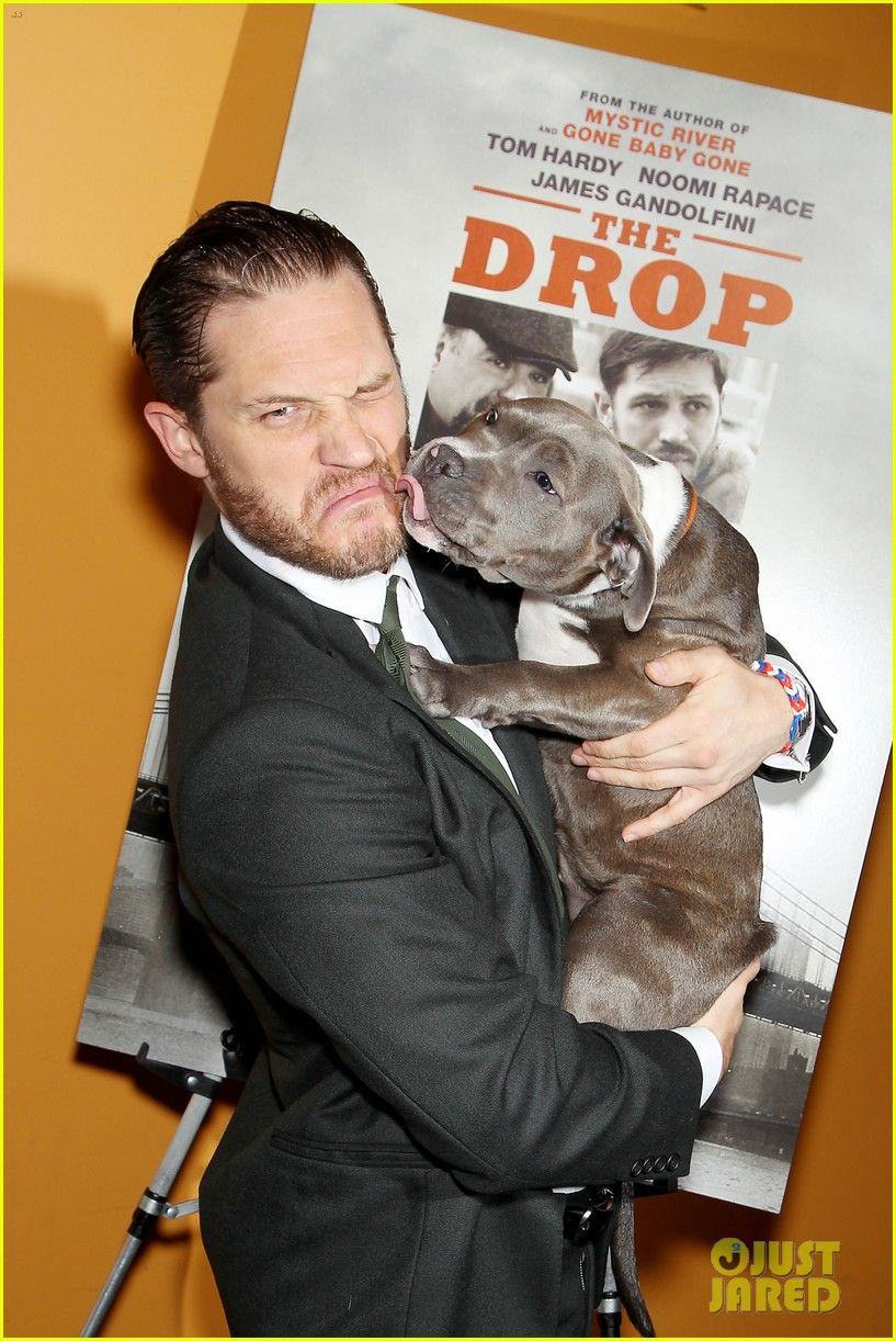 tom hardy gets licked on the face at drop nyc premiere 犬 ロックンローラ 怒り