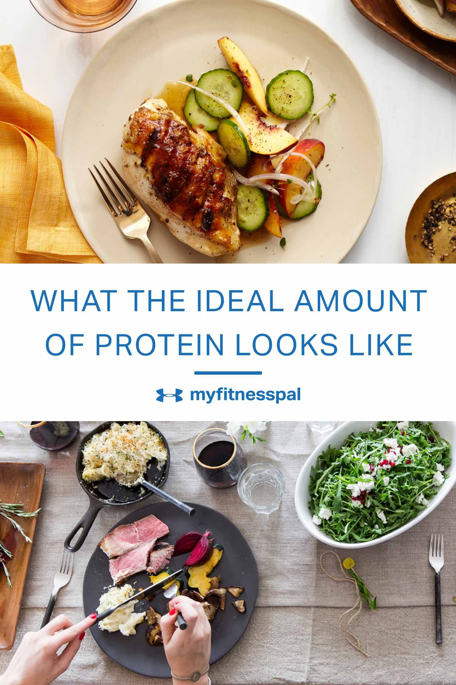 What the Ideal Amount of Protein Looks Like [Infographic