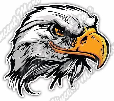 Bald Eagle Hawk White Head Bird Gift Idea Car Bumper Vinyl Sticker Decal 5 X4 Bald Eagle Art Eagle Head Tattoo Eagle Art