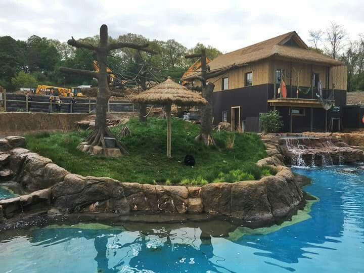 The Islands Pittsburgh Zoo Living Treasures Zoos Island