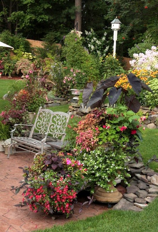 Lovely Garden And Sitting Space .AND A Gorgeous Place To Sit And Read